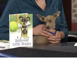A Different Little Doggy Children's Book - WFRV TV Segment